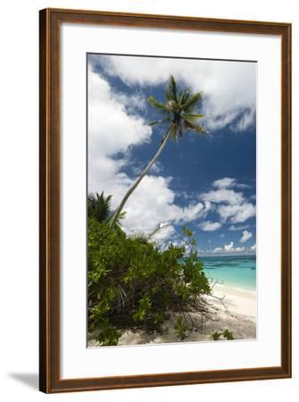Denis Island, Seychelles-Sergio Pitamitz-Framed Photographic Print