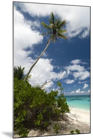 Denis Island, Seychelles-Sergio Pitamitz-Mounted Photographic Print