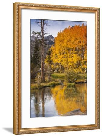 Eastern Sierra, Bishop Creek, California Outlet and Fall Color-Michael Qualls-Framed Photographic Print