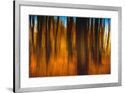 An Impressionistic in Camera Blur of Colorful Autumn Trees-Rona Schwarz-Framed Photographic Print