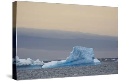 Antarctica. Brown Bluff. Bright Blue Iceberg-Inger Hogstrom-Stretched Canvas Print