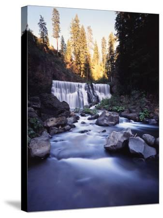California, Shasta Trinity Nf, Middle Fall on the Mccloud River-Christopher Talbot Frank-Stretched Canvas Print