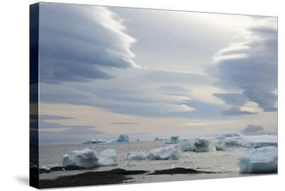 Antarctica. Brown Bluff. Lenticular Clouds Show Katabatic Winds-Inger Hogstrom-Stretched Canvas Print