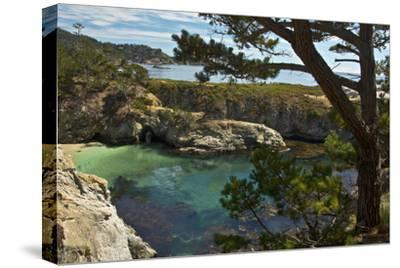 China Cove, Point Lobos State Reserve, Carmel, California, USA-Michel Hersen-Stretched Canvas Print