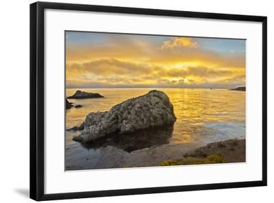 Sunset, Bird Island, Point Lobos State Reserve, California, USA-Michel Hersen-Framed Photographic Print