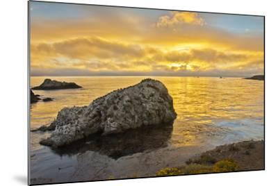 Sunset, Bird Island, Point Lobos State Reserve, California, USA-Michel Hersen-Mounted Photographic Print