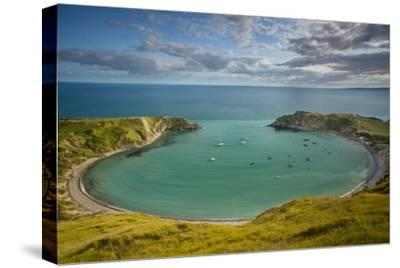 Evening View over Lulworth Cove, Jurassic Coast, Dorset, England-Brian Jannsen-Stretched Canvas Print