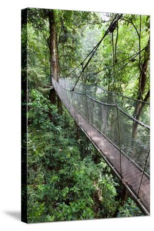 Suspension Bridge, Rainmaker Conservation Project, Costa Rica-Susan Degginger-Stretched Canvas Print