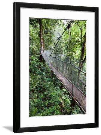 Suspension Bridge, Rainmaker Conservation Project, Costa Rica-Susan Degginger-Framed Photographic Print