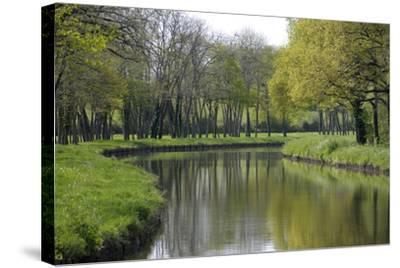 France, Loire. Canal Winding Through Spring Trees and Foliage-Kevin Oke-Stretched Canvas Print