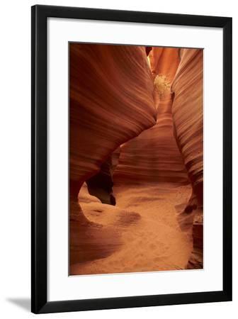 Arizona, Navajo Nation, Eroded Sandstone Formations and Tumbleweed-David Wall-Framed Photographic Print