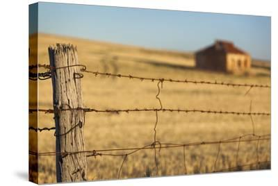Australia, Burra, Former Copper Mining Town, Abandoned Homestead-Walter Bibikow-Stretched Canvas Print