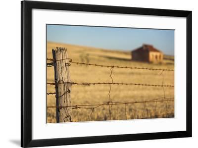 Australia, Burra, Former Copper Mining Town, Abandoned Homestead-Walter Bibikow-Framed Photographic Print