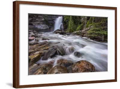 Baring Falls in Glacier National Park, Montana, USA-Chuck Haney-Framed Photographic Print