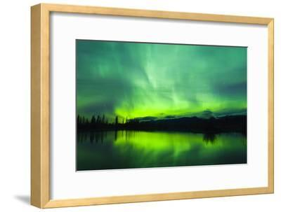 Green Aurora Borealis over Small Pond in Kluane National Park, Yukon Territory, Canada-Design Pics Inc-Framed Photographic Print