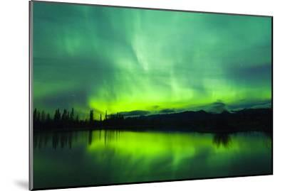 Green Aurora Borealis over Small Pond in Kluane National Park, Yukon Territory, Canada-Design Pics Inc-Mounted Photographic Print