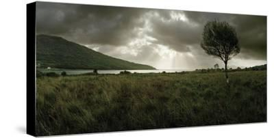 A Solitary Tree Overlooks Loch Na Dal in the Distance-Macduff Everton-Stretched Canvas Print