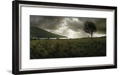 A Solitary Tree Overlooks Loch Na Dal in the Distance-Macduff Everton-Framed Photographic Print