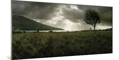 A Solitary Tree Overlooks Loch Na Dal in the Distance-Macduff Everton-Mounted Photographic Print