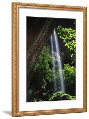 Zion National Park, Utah, USA-Design Pics Inc-Framed Photographic Print