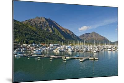 Scenic View of the Seward Small Boat Harbor on Resurrection Bay on a Sunny Day, Kenai Peninsula-Design Pics Inc-Mounted Photographic Print