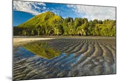Scenic View of Tidal Flats at Low Tide at the Mouth of Monashka Creek on Kodiak Island, Alaska-Design Pics Inc-Mounted Photographic Print