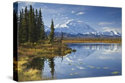The North Face and Peak of Mt. Mckinley Is Reflected in a Small Tundra Pond in Denali National Park-Design Pics Inc-Stretched Canvas Print