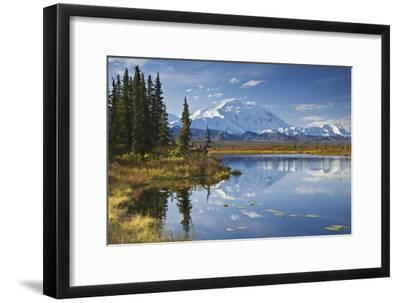 The North Face and Peak of Mt. Mckinley Is Reflected in a Small Tundra Pond in Denali National Park-Design Pics Inc-Framed Photographic Print