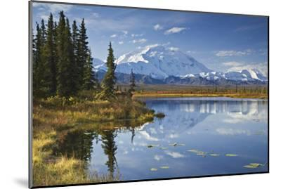 The North Face and Peak of Mt. Mckinley Is Reflected in a Small Tundra Pond in Denali National Park-Design Pics Inc-Mounted Photographic Print