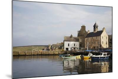 Village Houses and Boats in Harbor-Design Pics Inc-Mounted Photographic Print