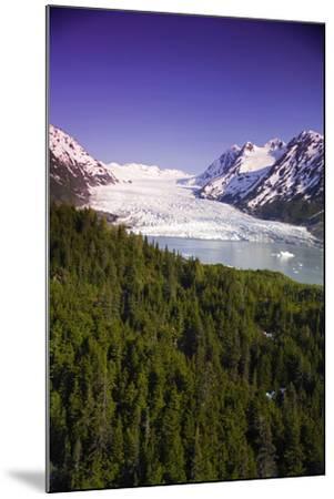 Aerial of Spencer Glacier Kenai Mountains Chugach National Forest Southcentral Alaska Summer-Design Pics Inc-Mounted Photographic Print