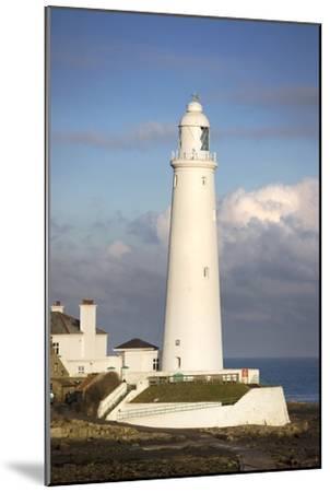 Lighthouse-Design Pics Inc-Mounted Photographic Print