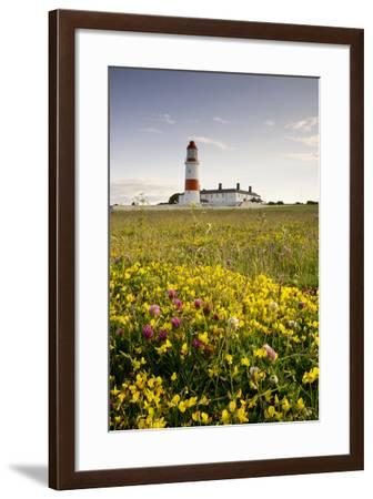 Souter Lighthouse; South Shields Marsden South Tyneside Tyne and Wear England-Design Pics Inc-Framed Photographic Print