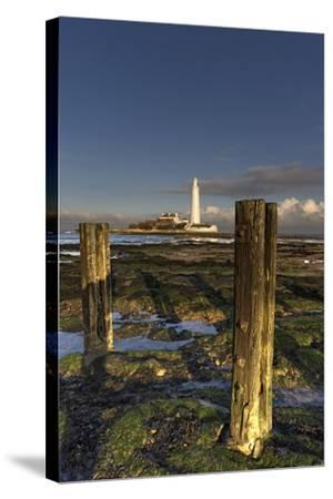 Wooden Posts and Lighthouse in Distance; Whitley Bay, Northumberland, England-Design Pics Inc-Stretched Canvas Print