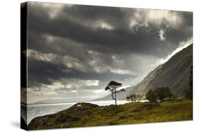Sunlight Shingin Through the Storm Clouds over the Water Along the Coastline-Design Pics Inc-Stretched Canvas Print