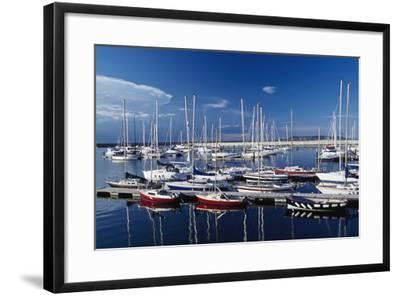 Sailboats Moored in Harbor Marina-Design Pics Inc-Framed Photographic Print