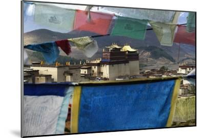 Prayer Flags-Design Pics Inc-Mounted Photographic Print