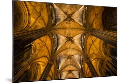 A View of the Columns and Vaulted Ceiling of the Catedral De Barcelona-Michael Melford-Mounted Photographic Print
