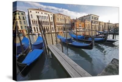 Gondolas Moored on the Grand Canal; Venice Italy-Design Pics Inc-Stretched Canvas Print