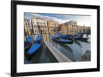 Gondolas Moored on the Grand Canal; Venice Italy-Design Pics Inc-Framed Photographic Print