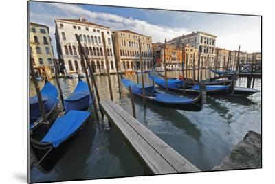 Gondolas Moored on the Grand Canal; Venice Italy-Design Pics Inc-Mounted Photographic Print