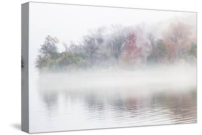 Fall Leaves Peek Through the Morning Fog on the Occoquan River, Near the Potomac River-Kent Kobersteen-Stretched Canvas Print