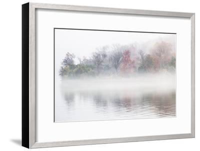Fall Leaves Peek Through the Morning Fog on the Occoquan River, Near the Potomac River-Kent Kobersteen-Framed Photographic Print