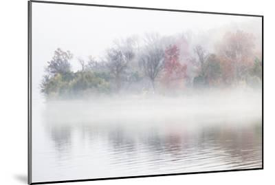 Fall Leaves Peek Through the Morning Fog on the Occoquan River, Near the Potomac River-Kent Kobersteen-Mounted Photographic Print