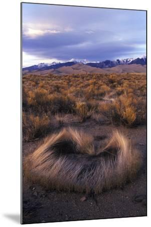 Scrub with Dunes and Mountains in the Distance, Great Sand Dunes National Park-Keith Ladzinski-Mounted Photographic Print