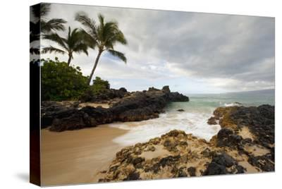 Hawaii, Maui, Makena Cove, Tropical Beach and Palm Trees-Design Pics Inc-Stretched Canvas Print