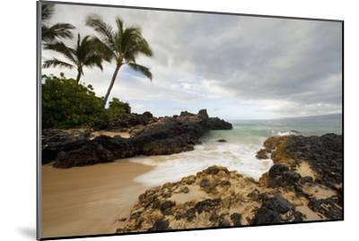 Hawaii, Maui, Makena Cove, Tropical Beach and Palm Trees-Design Pics Inc-Mounted Photographic Print