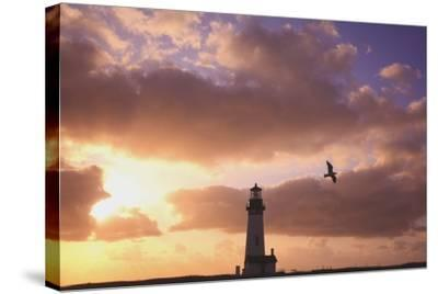 Oregon, United States of America; Yaquina Head Lighthouse at Sunset-Design Pics Inc-Stretched Canvas Print