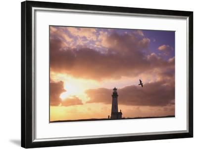Oregon, United States of America; Yaquina Head Lighthouse at Sunset-Design Pics Inc-Framed Photographic Print