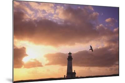 Oregon, United States of America; Yaquina Head Lighthouse at Sunset-Design Pics Inc-Mounted Photographic Print